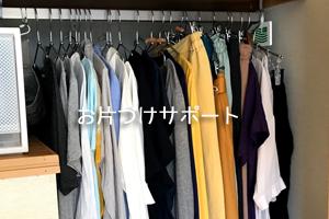 link_storage5