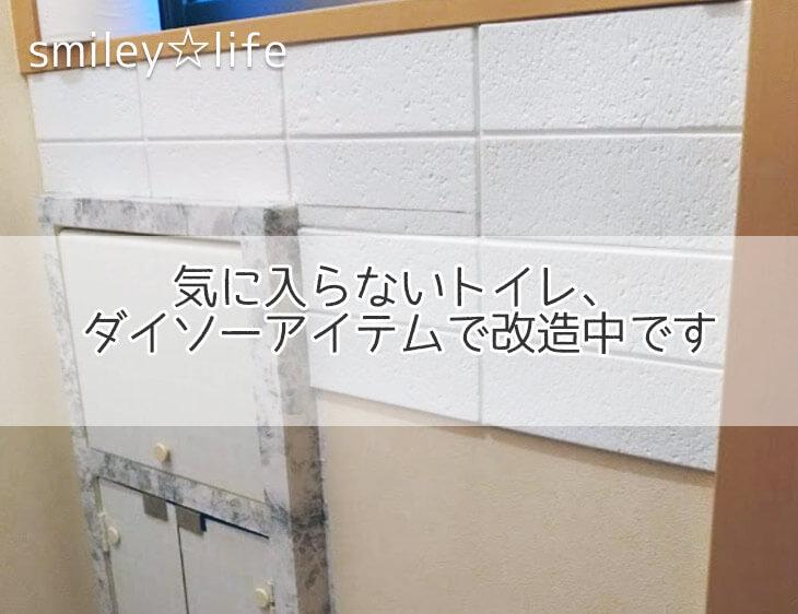 気に入らないトイレ、ダイソーアイテムで改造中です | 苦手からはじめるお片付け smiley☆life