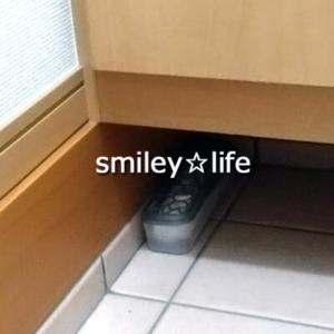 靴箱の下に